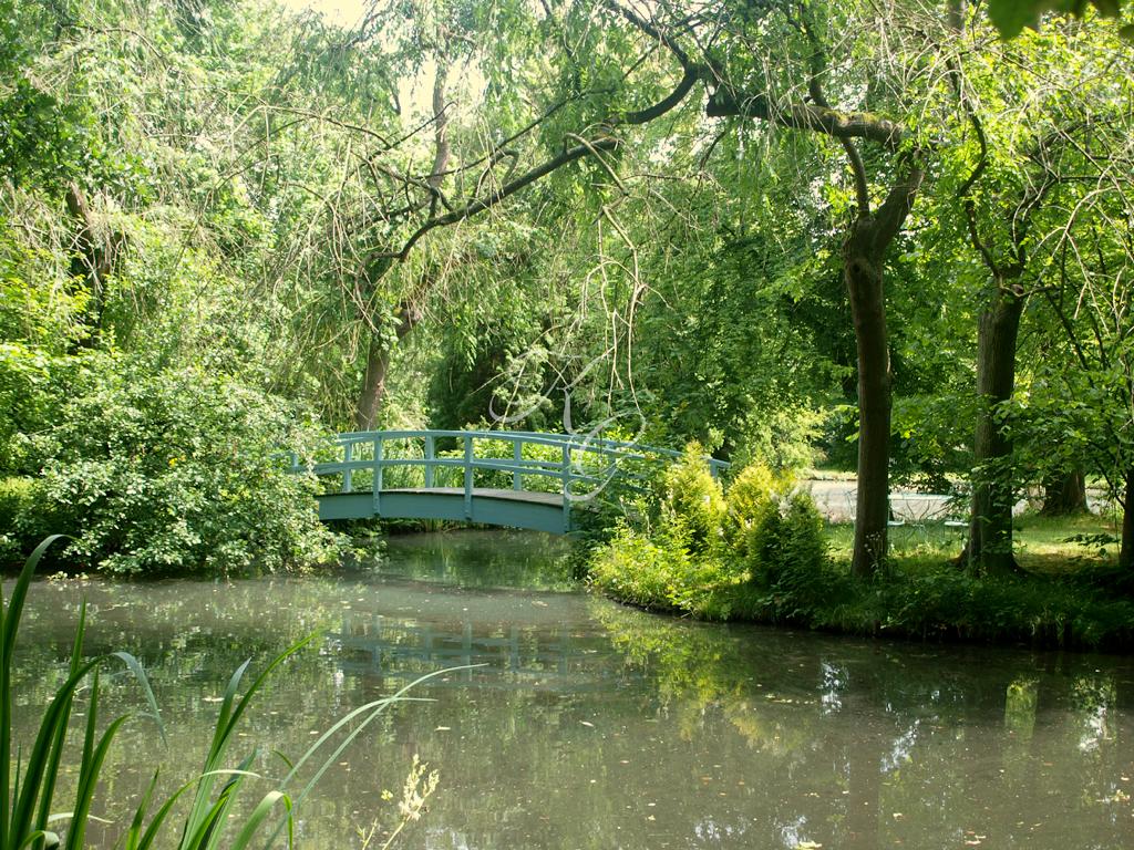 Brücke an der Teichanlage
